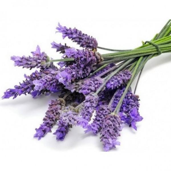 Lavender Hydrosol (Org)  薰衣草有機花水